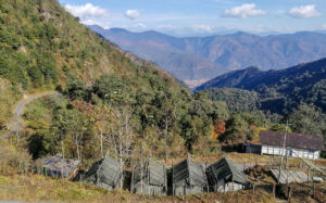 Lama Camp
