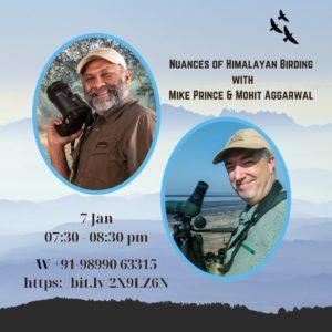 Himalayan Birding
