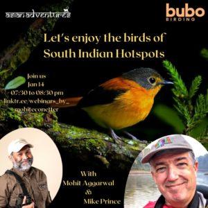 South Indian Birding Hotspots