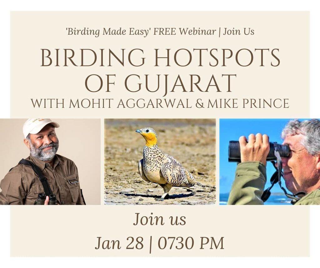 Birding Hotspots of Gujarat