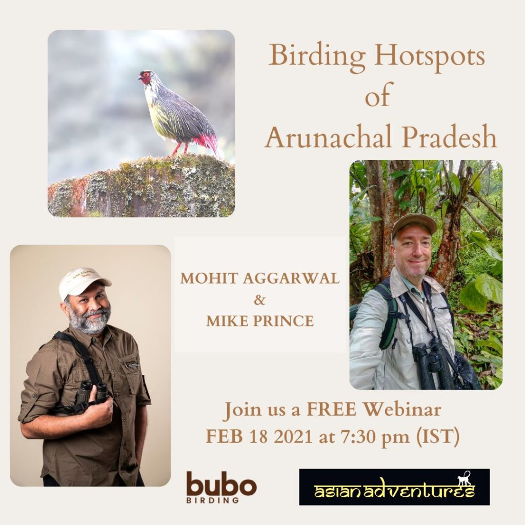 Birding Hotspots of Arunachal Pradesh