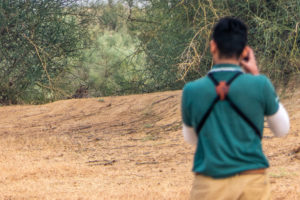 Photographing Indian Eagle Owl